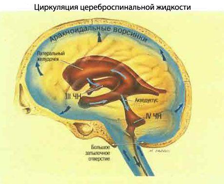 Aumento della pressione intracranica (ipertensione..